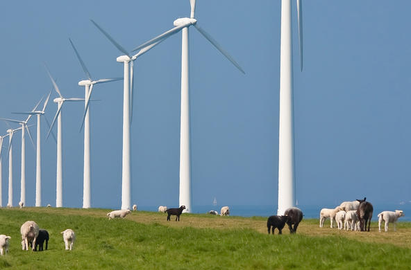 windfarm sustainable energy ©