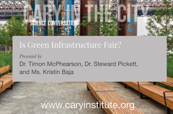 is green infrastructure fair?