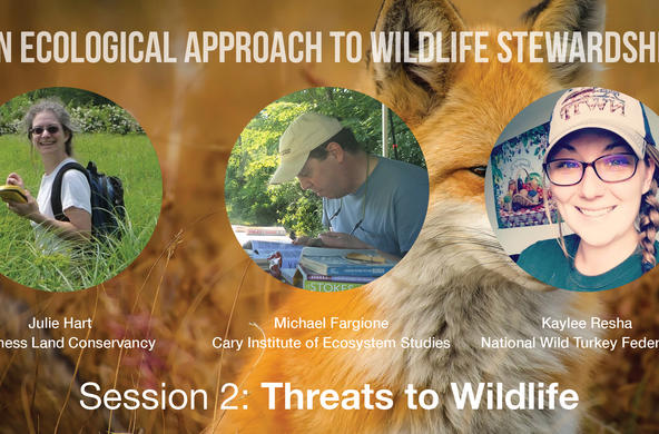 wildlife management workshop